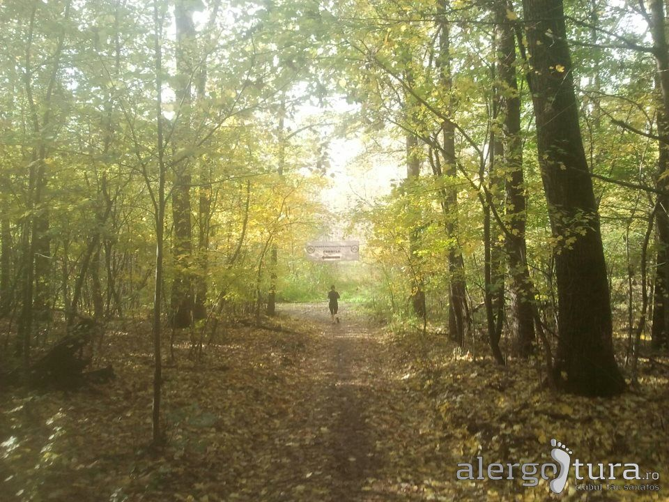 Traseu prin padure la maratonul de la Debrecen